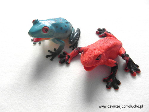 SAM_5075-gumowe żaby