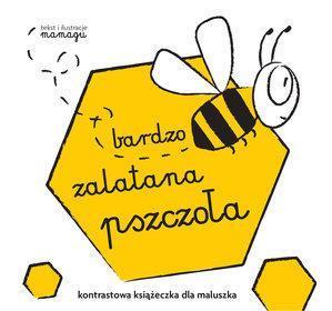 bardzo zalatana pszczoła