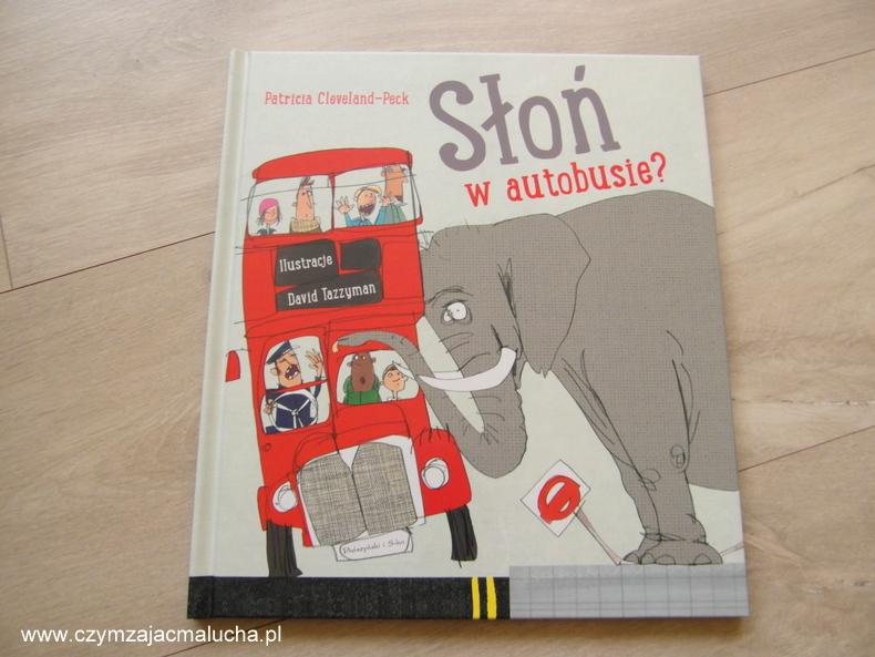 słoń w autobusie