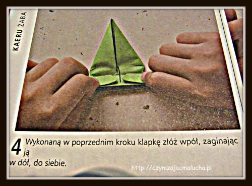 SAM_0202