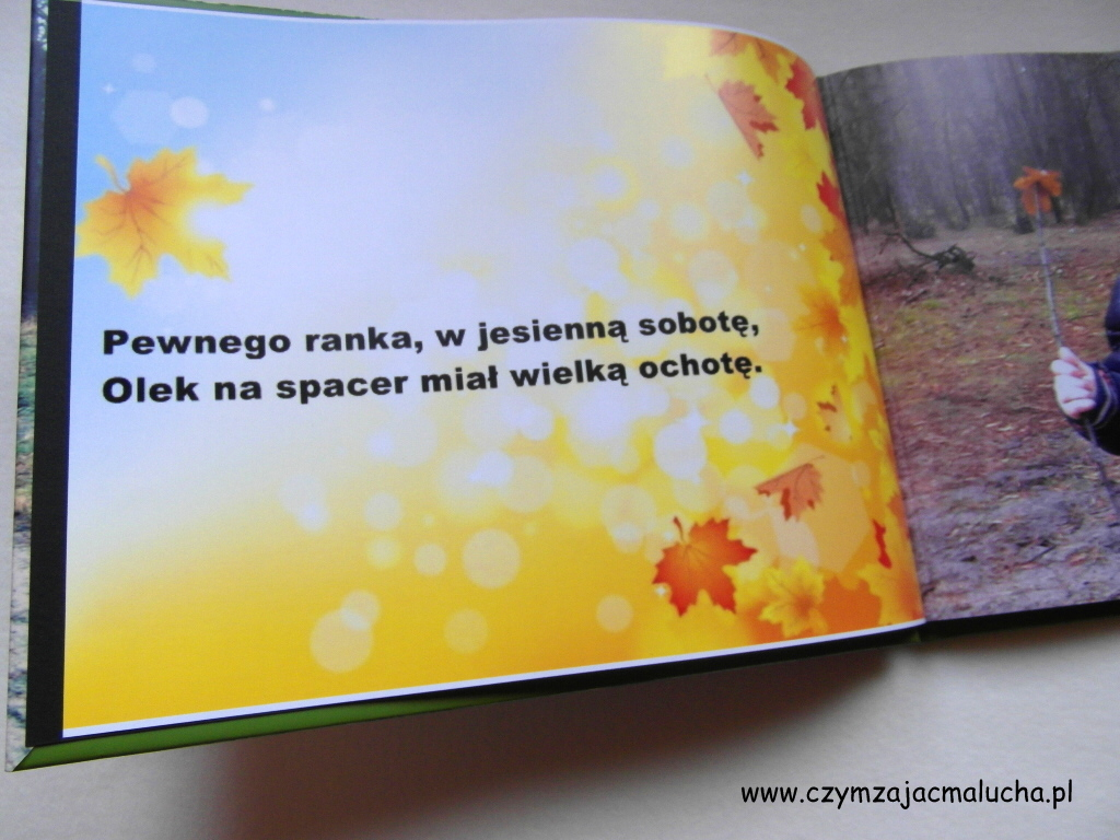 SAM_3527