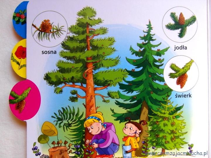 SAM_5282-przyroda dla dzieci